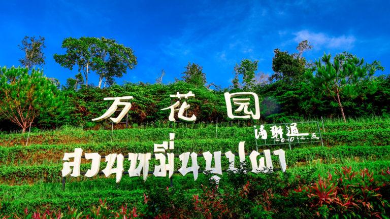 ลงใต้เที่ยมชม สวนหมื่นบุปผา หรือสวนดอกไม้เมืองหนาวเบตง จังหวัดยะลา
