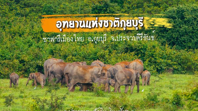 เที่ยวชม อุทยานแห่งชาติกุยบุรี ซาฟารีเมืองไทย ที่รอให้ทุกคนมาสัมผัส