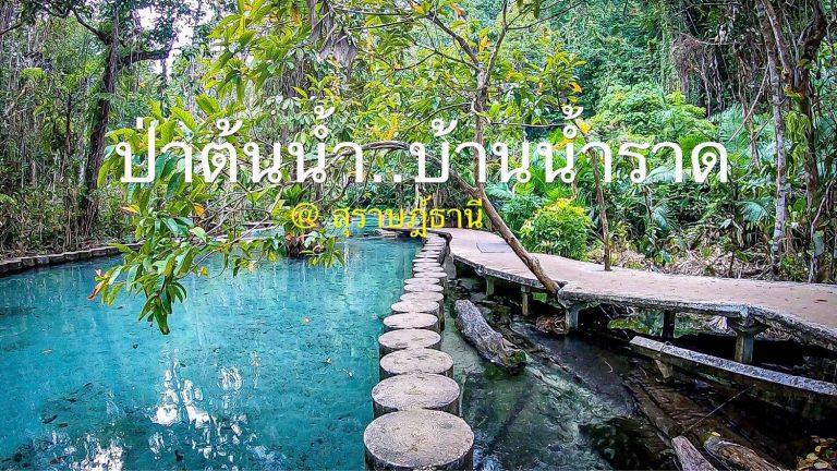 ป่าต้นน้ำ บ้านน้ำราด UNSEEN จังหวัดสุราษฎร์ฯ ที่ใครมาก็ต้องแวะ