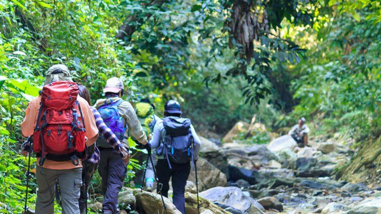 """4 เรื่องน่ารู้ก่อนที่จะ """"เดินป่า"""" ในช่วงหน้าฝนให้สนุกและปลอดภัยตลอดทริป"""