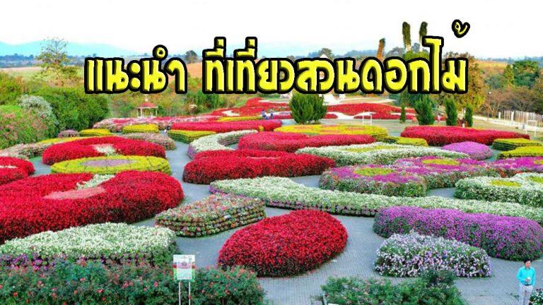 ที่เที่ยวสวนดอกไม้ แสนสวยกับการสัมผัสบรรยากาศแบบธรรมชาติ
